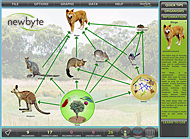 Food Webs: Australian Woodlands
