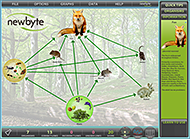 Food Webs - British Woodlands